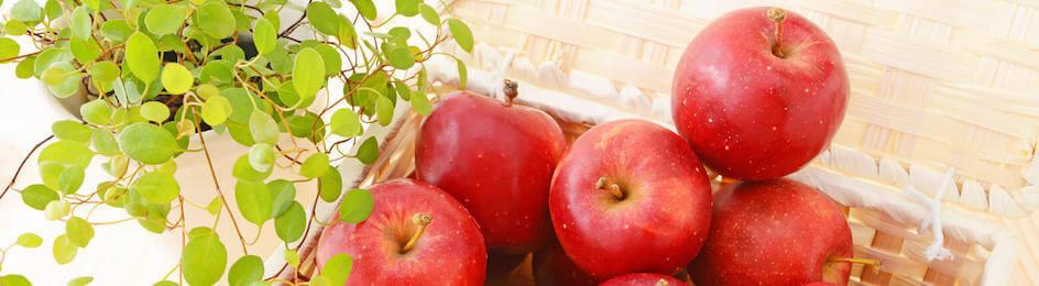 冬に美味しい♡りんごデザートレシピ